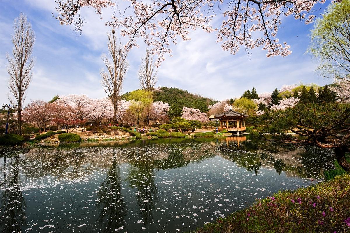 10 Tempat Wisata di Korea Selatan yang Wajib Dikunjungi