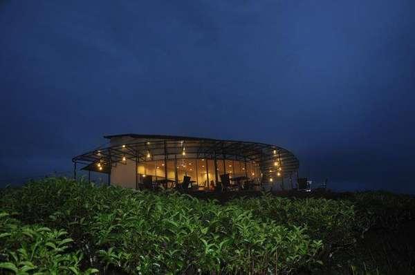 Makassar Juga Punya Kebun Teh Malino Highlands yang Cantik!