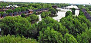 Taman Wisata Alam Angke