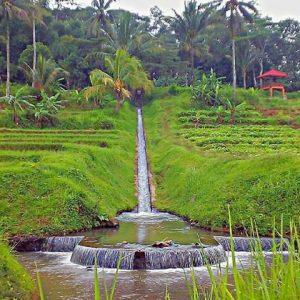 Desa Wisata Sitonjul