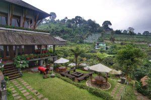 Rumah Stroberi Lembang