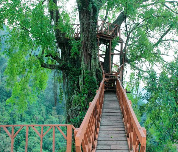 25 Tempat Wisata Di Bogor Yang Wajib Dikunjungi