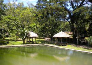 tempat wisata di Semarang - Kampoeng Wisata Taman Lele