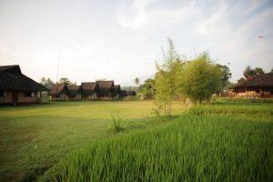 Wisata di Bogor - Kampung Budaya Sindangbarang