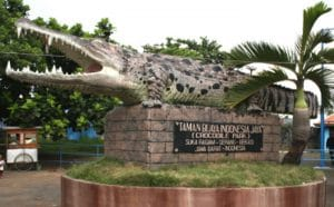 Tempat Wisata Bekasi - Taman Buaya Indonesia Jaya