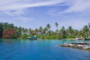 Berenang di Pulau Menjangan bisa jadi kegiatan yang menyenangkan