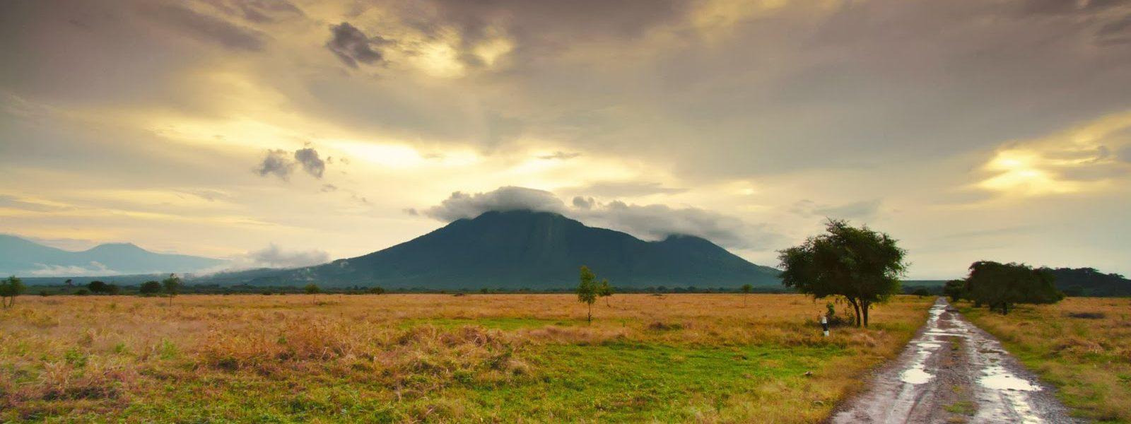 Taman Nasional Baluran Jawa Timur
