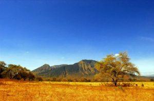 savana Taman Nasional Baluran