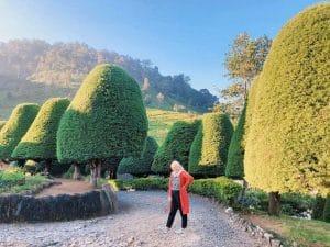 Bukit Jamur, Rancabolang, Ciwidey (talskii), Wisata Ciwidey Bukit Jamur
