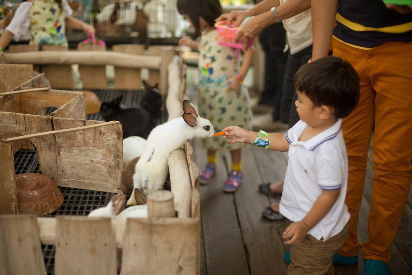 8 Tempat Wisata Anak di Bandung yang Wajib Dikunjungi