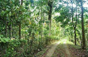 Agrowisata Karangsari