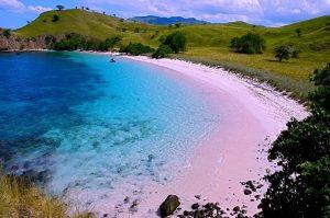 Pantai Terindah di Indonesia - Pantai Pink, Pulau Komodo