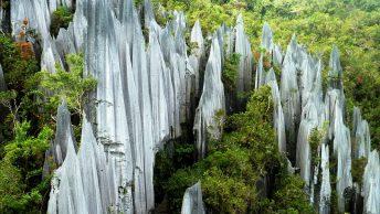 Taman Nasional Gunung Mulu