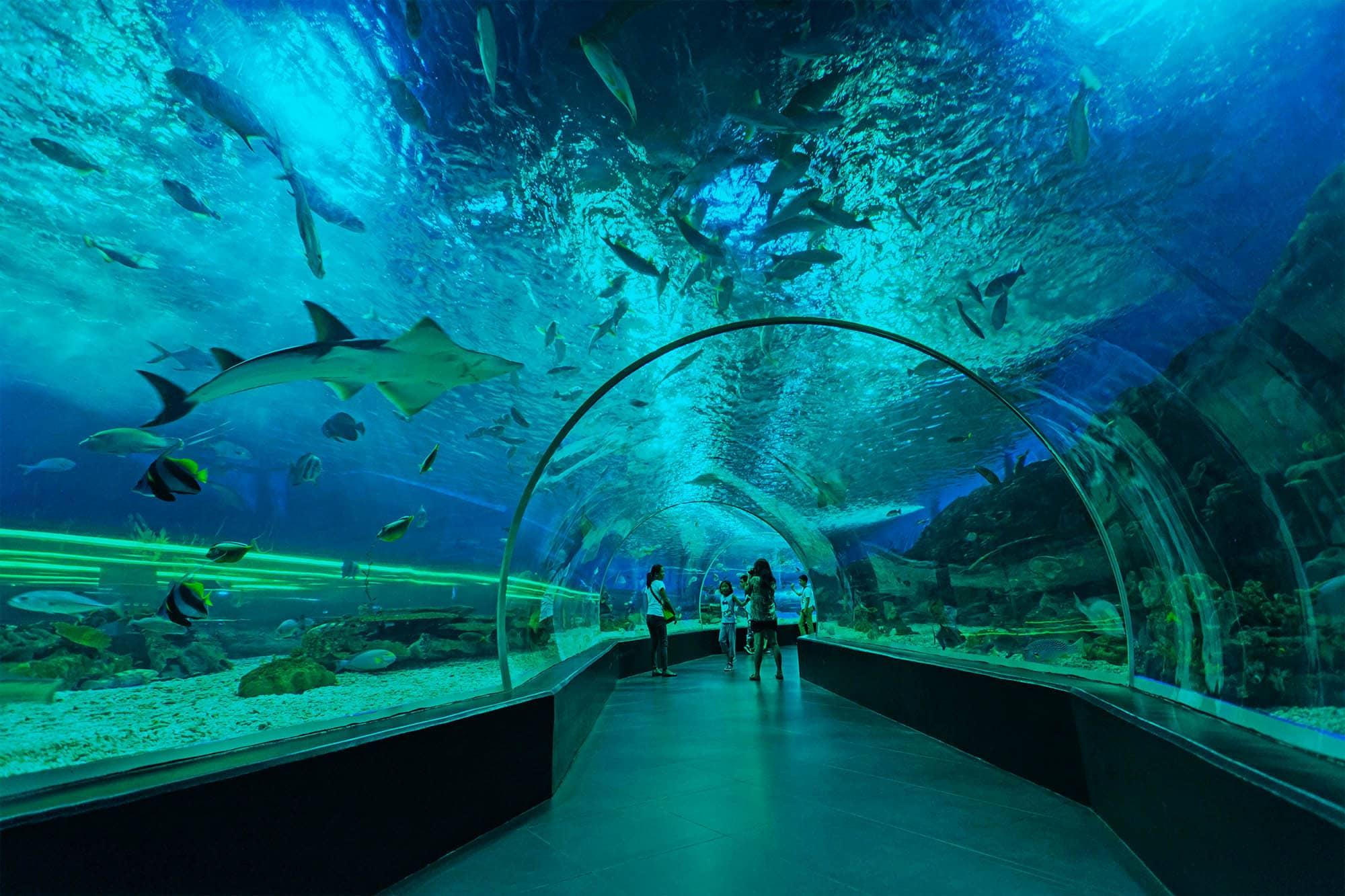 Manila Ocean Park (travel.okezone)