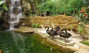 Kebun Binatang Gembiraloka