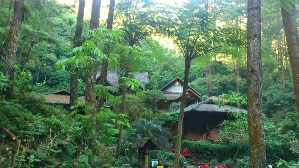 25 Tempat Wisata Di Puncak Dan Sekitarnya Yang Wajib Dikunjungi