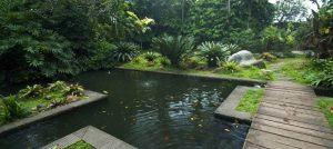 Tempat Wisata di Depok - Godong Ijo