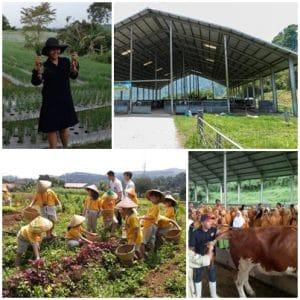 Garuda Farm Sentul (cakarlangit, tripadvisor, dailyvoyagers)
