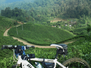 Tempat Wisata di Sukabumi - Gunung Halimun