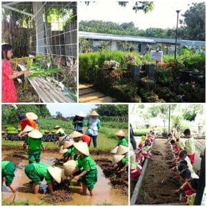 Sentulfresh Education Farm (dictio, theurbanmama)