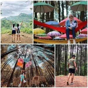 Taman Wisata Alam Gunung Pancar (fahrimuhamaddahlan, wenysantika, f.a_08, explorewisata)