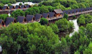 Taman Wisata Alam Mangrove Angke Kapuk . Tempat wisata di jakarta