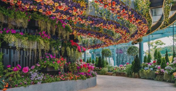 gambar Floral Fantasy.png