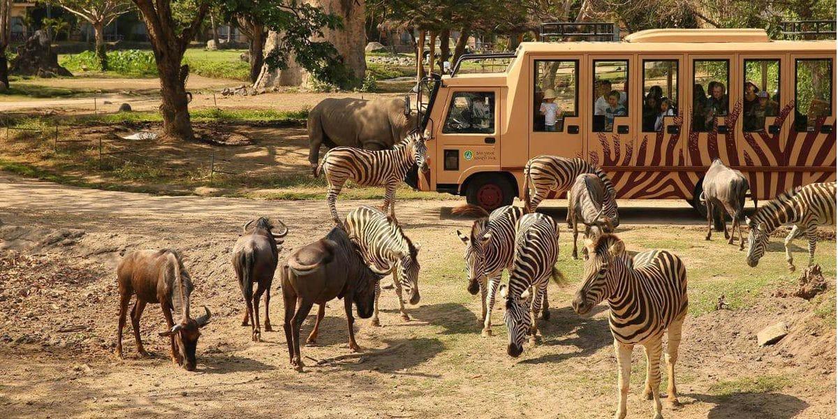 Bali Zoo, Wisata Edukasi di Bali yang Cocok Dikunjungi Bersama Anak