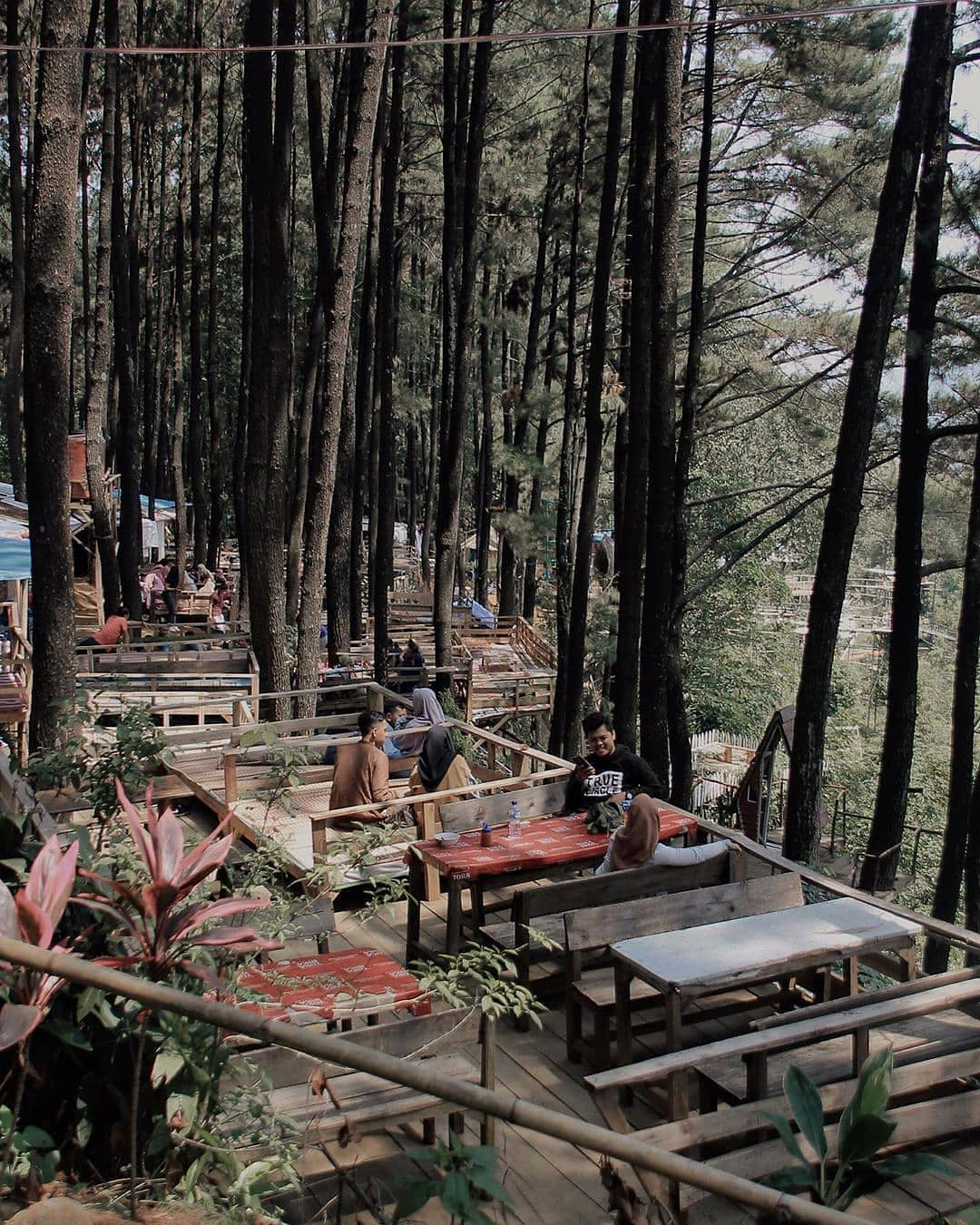 Cafe di Gunung Pancar, Jawa Barat (budi.manik)