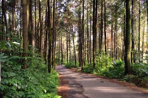 Pesona Gunung Pancar, Jawa Barat (cibinongonline)