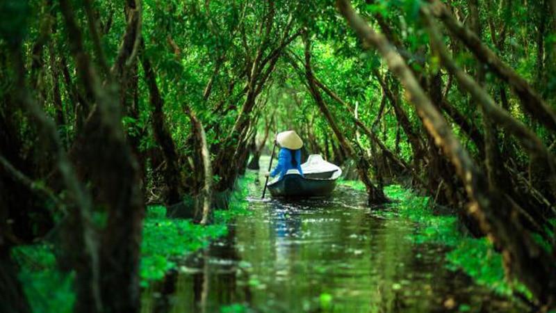 Wisata Vietnam - Hutan Xeo Quyt (asianwaytravel)