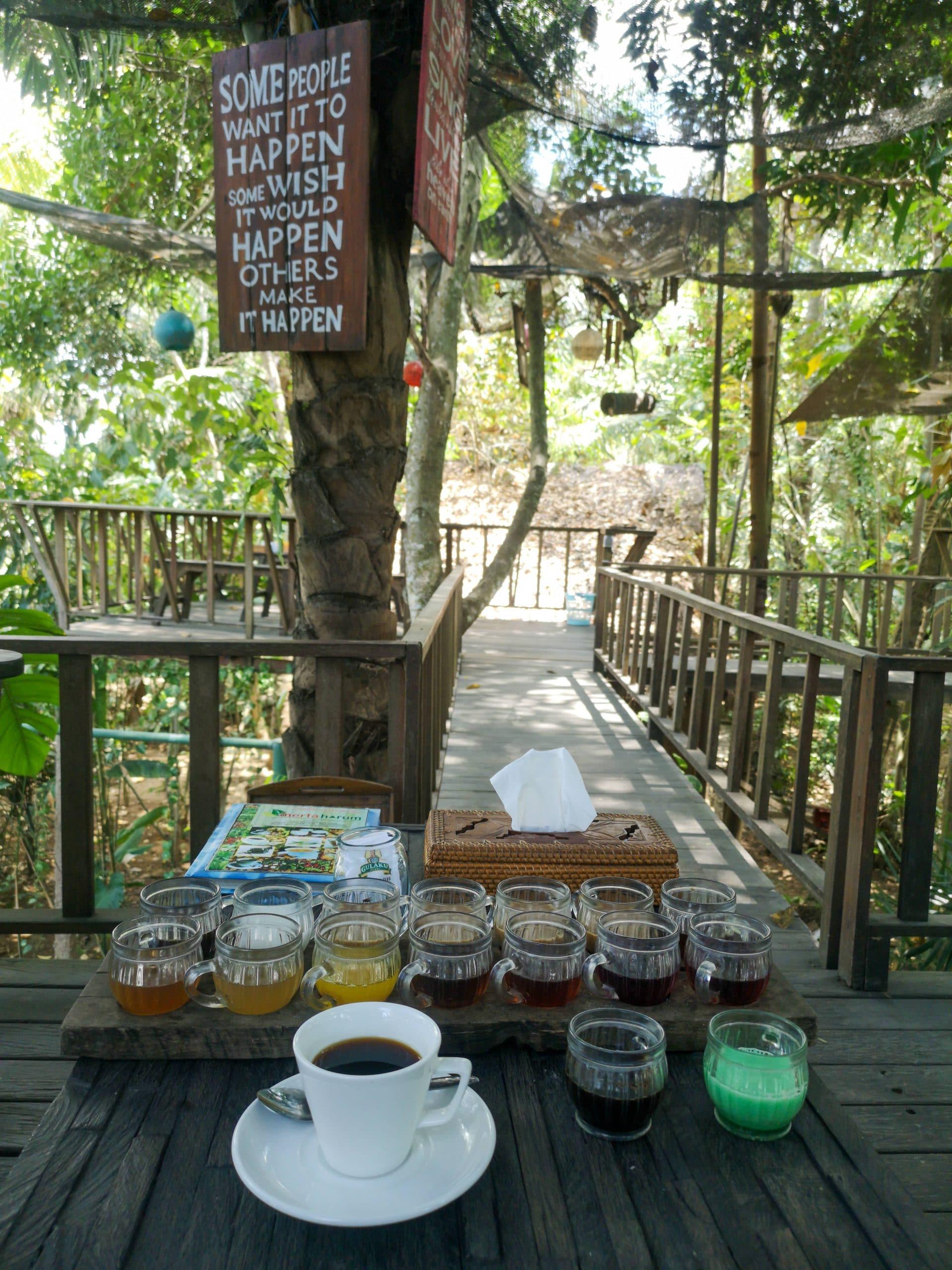 Itinerary Bali 3 Hari (Hari Pertama) - Merta Harum Luwak Coffee Ubud (travelingyuk)