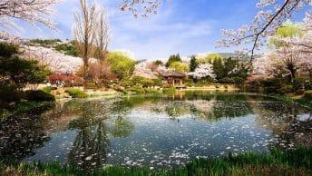 Tempat Wisata di Korea Selatan Terpopuler