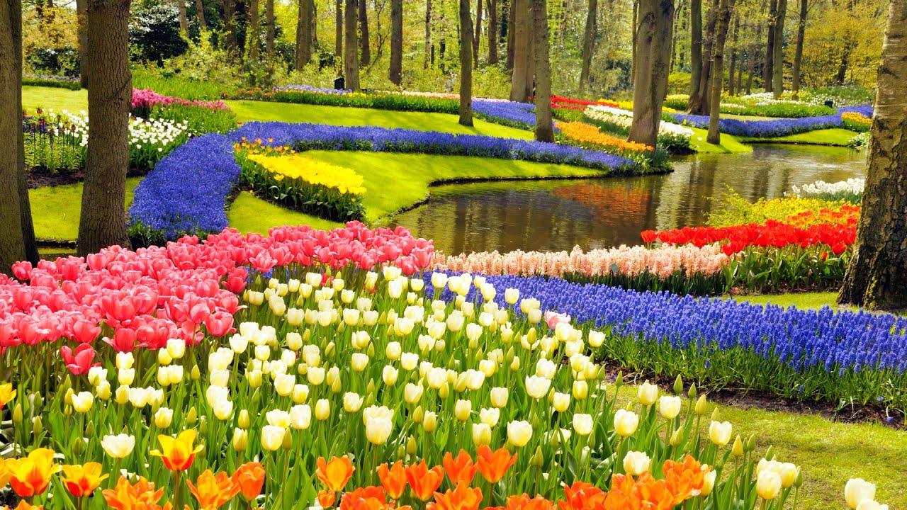 Wisata Eropa - Keukenhof Garden (makintau)