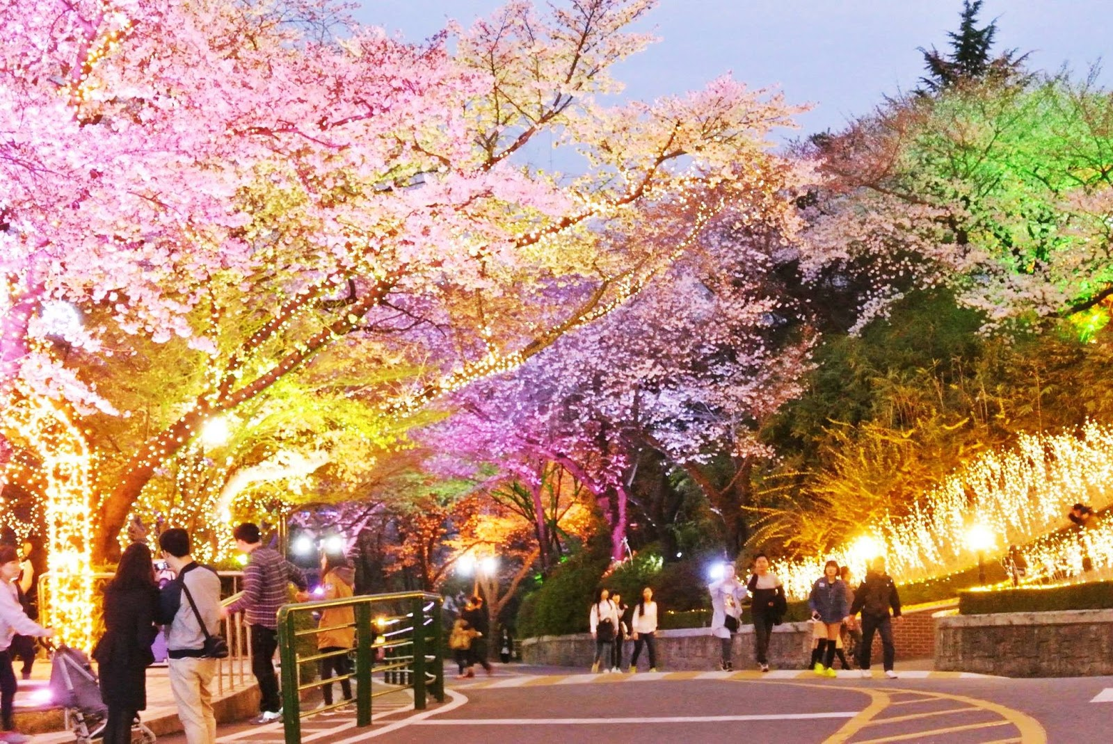 Wisata di Korea Selatan - Namsan Park Malam Hari (myeongdong)