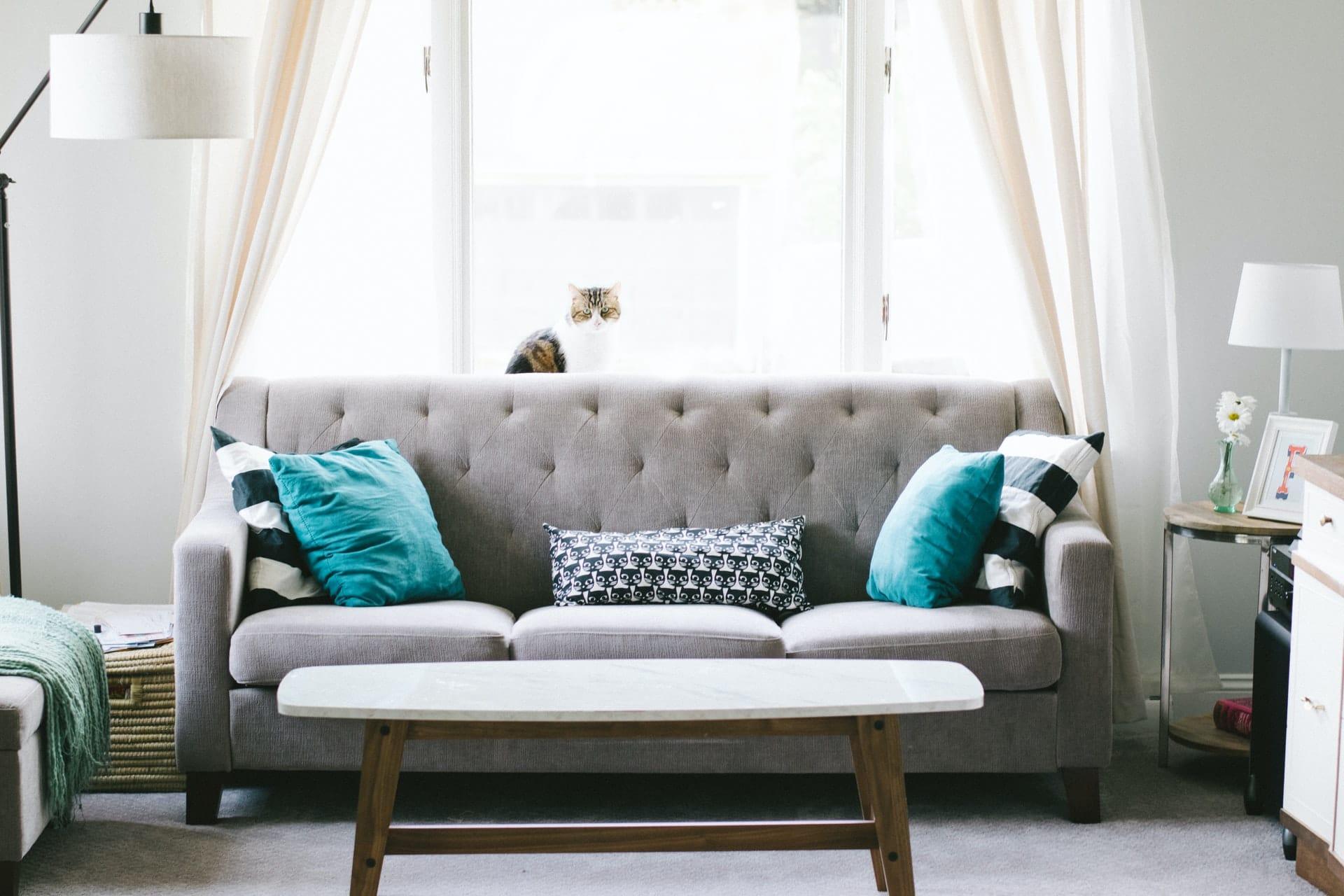 Sofa Ruang Tamu Rumah Interior(nathanfertig)