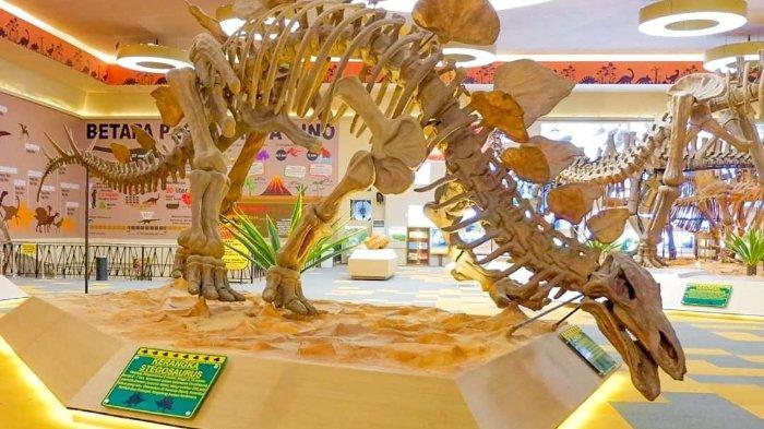 Jatim Park 3 - Museum Dinosaurus (tribunnewswiki)