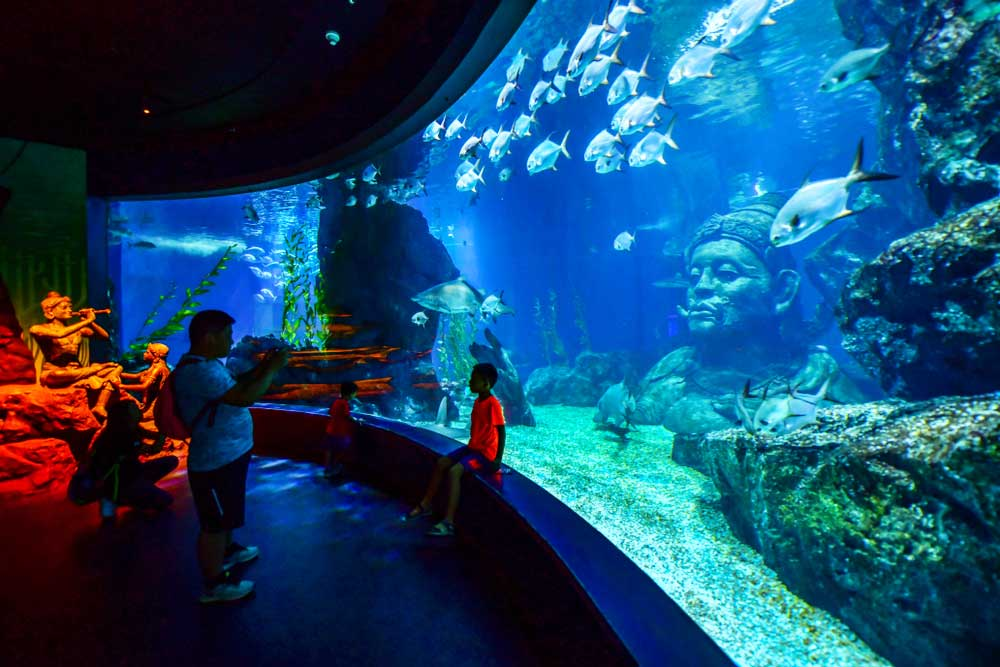 Sea Life Bangkok Ocean World (shutterstock)