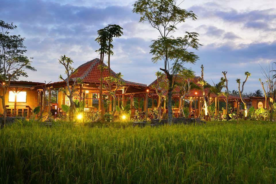 Kuliner Bali - Bebek Tepi Sawah (id.pinterest)