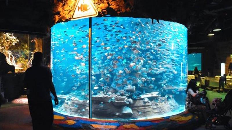 Ancol - Sea World (tempatasik)