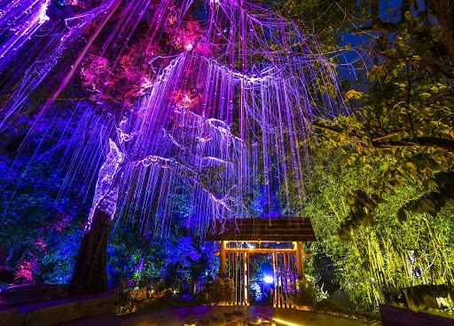Avatar Secret Garden (alfitravel)