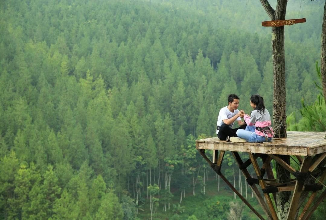 The Lodge Maribaya - Sky Tree (amazingindonesia)