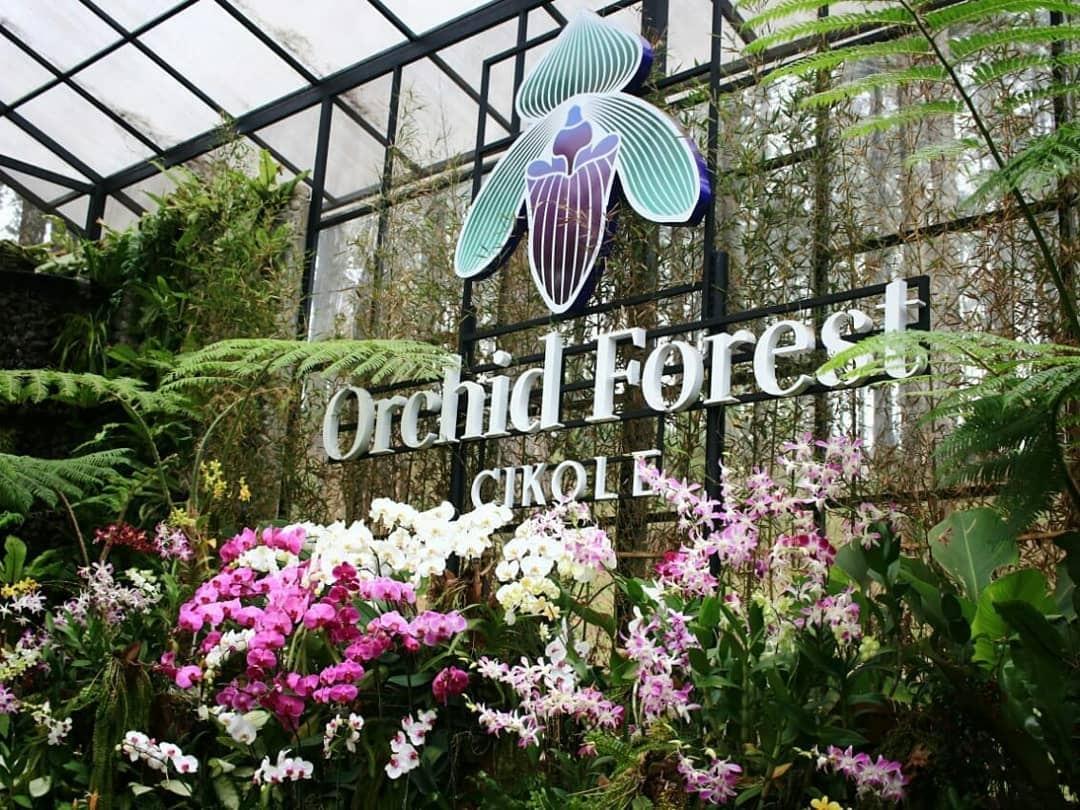 Orchid Forest Cikole (iklantravel)
