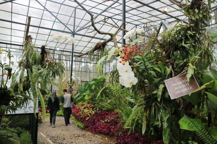 Orchid Forest Cikole (kompaslifestyle)