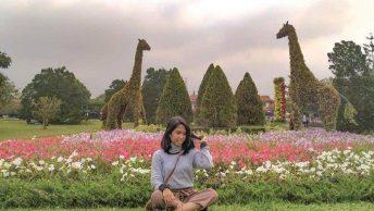 Taman Bunga Nusantara (anita.batvin)