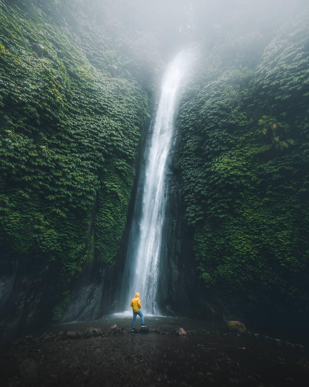 Bali (pandde._)