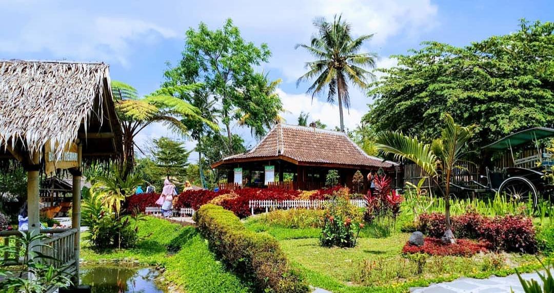 Bhumi Merapi - Taman hidroponik (alamwisata7)