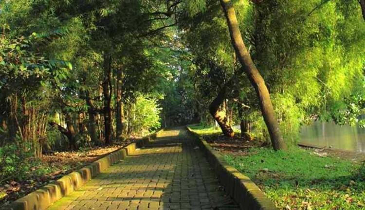 Tempat wisata alam di Jakarta - Hutan Kota Srengseng (danauki.blogspot)