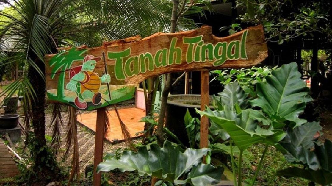 Tempat wisata alam di Jakarta - Hutan Kota Tanah Tingal (review.bukalapak)