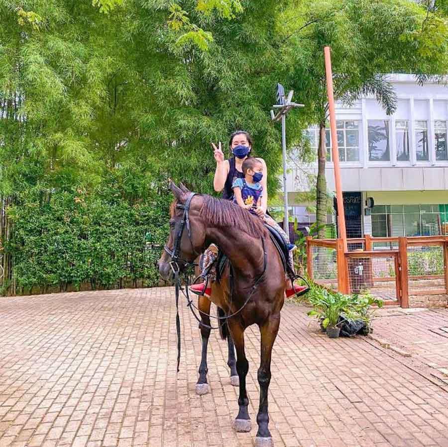 Scientia Square Park - Horse riding (genpi)